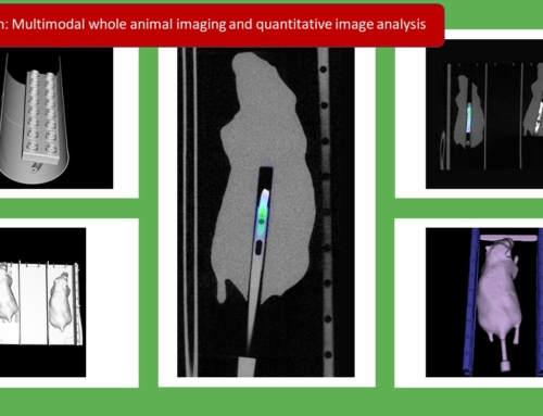 Graduate school 'Gut-Liver Axis': Laboratory rotations as key elements of the educational programme