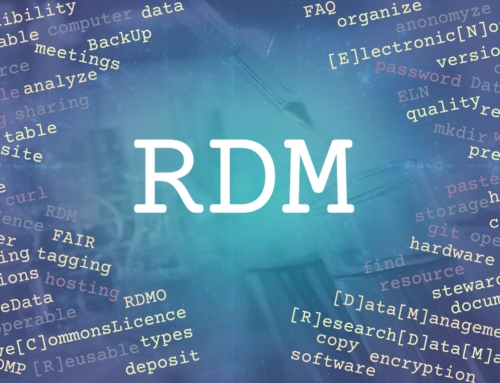 RDM-Newsletter Nr. 10 is out!