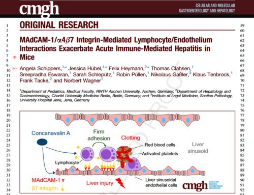 MAdCAM-1/α4β7 Integrin-Mediated Lymphocyte/Endothelium Interactions Exacerbate Acute Immune-Mediated Hepatitis in Mice